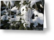 Slow Snow Melt Greeting Card