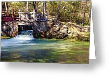 Sluice Gate At Alley Spring Greeting Card