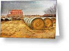 Slumbering In The Countryside Greeting Card