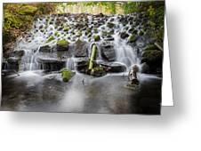 Small Cascade In Marlay Park Greeting Card