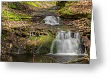 Small Falls At Parfrey's Glen Greeting Card