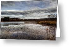 Small Lake Scene Greeting Card