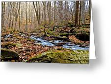 Small Pennsylvania Creek In Autumn Greeting Card