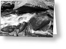 Small Stream Smoky Mountains Bw Greeting Card