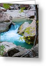 Small Virgin River Waterfall In Zion Canyon Narrows In Zion Np-ut Greeting Card