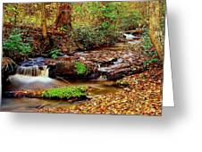 Small Waterfall And Stream 2 Greeting Card