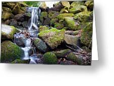 Small Waterfall In Marlay Park Dublin Greeting Card