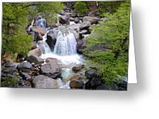 Small Waterfall Near Hwy 120 Roadside In Yosemite Np-ca- 2013 Greeting Card