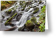 Small Waterfalls In Marlay Park Greeting Card