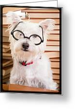 Smart Doggie Greeting Card
