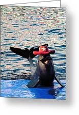 Smiley Dolphin Greeting Card