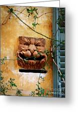 Smiling Cat Mail Box Greeting Card