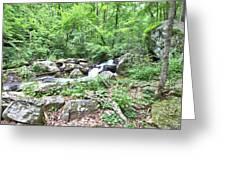 Smith Creek Downstream Of Anna Ruby Falls - 2 Greeting Card