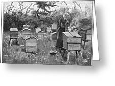 Smoking The Bees          Date 1889 Greeting Card