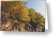 Smoky Mountain Autumn Greeting Card