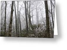 Smoky Mountain Hardwoods Greeting Card
