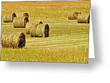 Smoky Mountain Hay Greeting Card