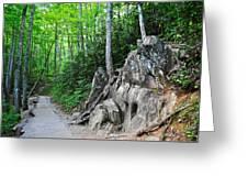 Smoky Mountain Hike Greeting Card