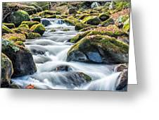 Smoky Mountain Rapids Greeting Card by Victor Culpepper