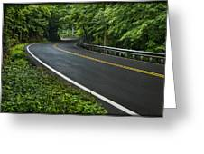 Smoky Mountain Road After Spring Rain E70 Greeting Card