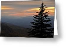 Smoky Mountain Sentinel  Greeting Card