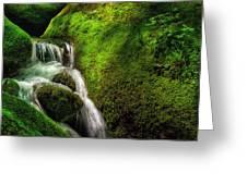 Smoky Mountain Stream And Boulders E223 Greeting Card