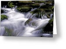 Smoky Mountain Stream Greeting Card
