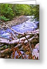 Smoky Mountain Stream Two Greeting Card