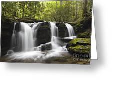 Smoky Mountain Waterfall - D008427 Greeting Card