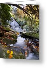 Smoky Mountain Waterfall Greeting Card