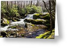 Smoky Mountain Waterfalls Greeting Card