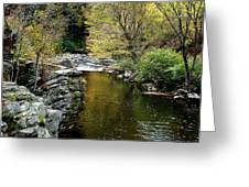 Smoky Mountian River Greeting Card by Sandy Keeton