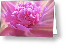Smooth Pink Greeting Card