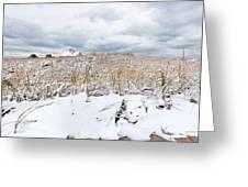 Smuggler's Beach Snow Cape Cod Greeting Card