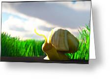 Snail And Grass... Greeting Card
