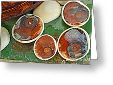 Snail Stones Greeting Card