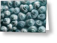 Snails Cyan Greeting Card by Priska Wettstein