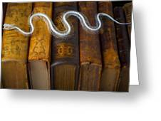 Snake And Antique Books Greeting Card