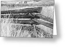 Snake Fence  Greeting Card