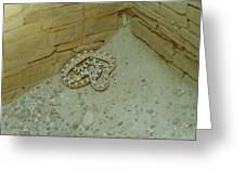 Snake In Ruins Greeting Card