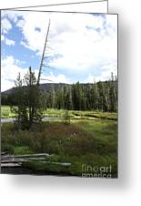 Snake River Meadow Greeting Card