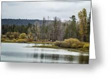 Snake River Near Cattleman's Bridge Site -  Grand Tetons Greeting Card
