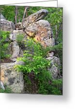 Snake Rock Greeting Card