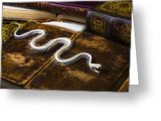 Snake Skeleton And Old Books Greeting Card