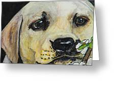 Sniff The Flowers Greeting Card by Roger Wedegis