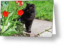 Sniffing Spring Greeting Card
