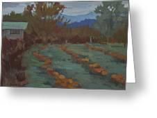 Snohomish Pumpkin Patch Greeting Card