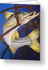 Snook Painting Greeting Card by Lisa Bentley