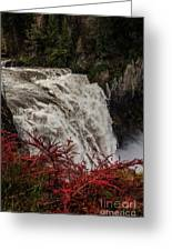 Snoqualmie Falls At Flood Stage Greeting Card