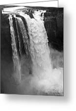 Snoqualmie Falls - Black And White Greeting Card